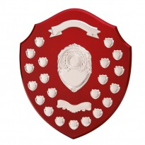 Ultimate 21 Year Annual Shield