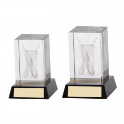 3D Crystal Cricket Trophy