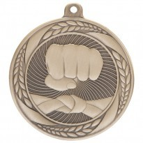Boxing Martial Arts Medals